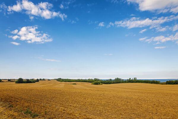 広大な青空がある風景写真